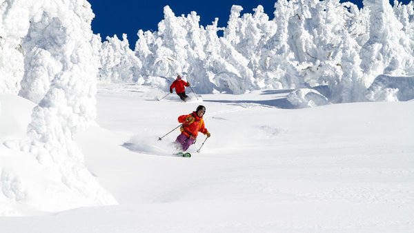 Valentine's Day cat skiing special & more
