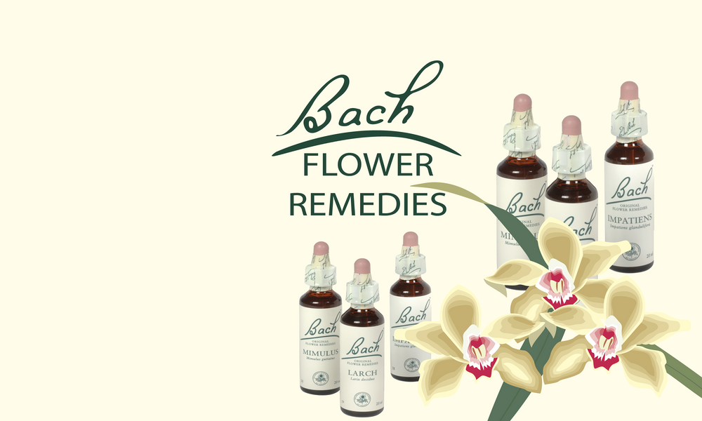 Bach Flower Remedies from Homeopathy Express, UK