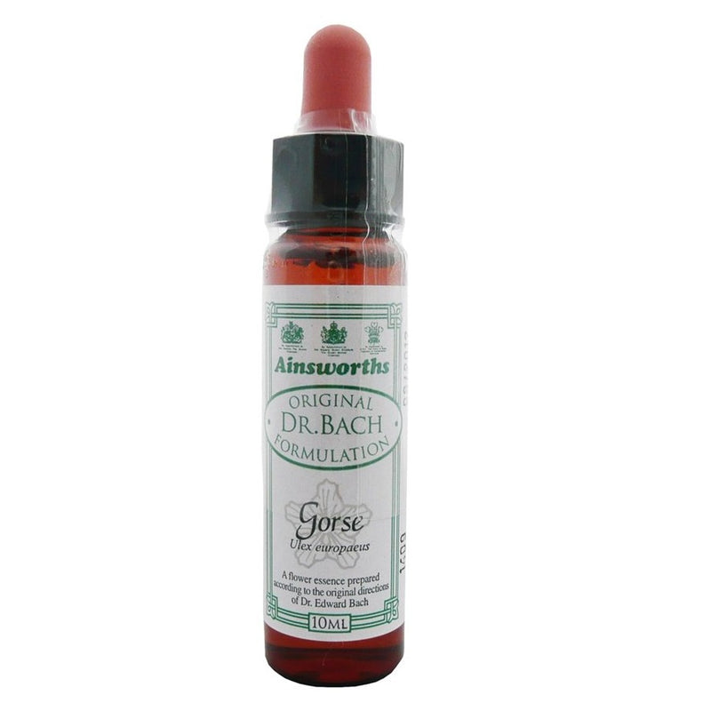 Ainsworths Gorse Bach Flower Remedy 10ml