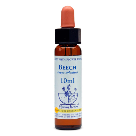 Healing Herbs Beech Bach Flower Remedy 10ml