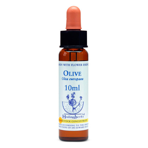 Healing Herbs Olive Bach Flower Remedy 10ml