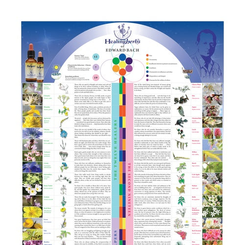 The Bach Flower Identifier - English Poster