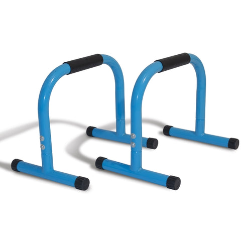 Physical Company Parallettes Image McSport Ireland