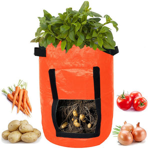 DIY Potatoes Planter Bag (Set of 2)