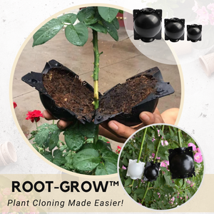 Plant Rooting Growing Box
