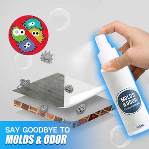 CleanHouse Mold and Odor Remover Spray
