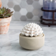 Load image into Gallery viewer, Succulent Porcelain Diffuser