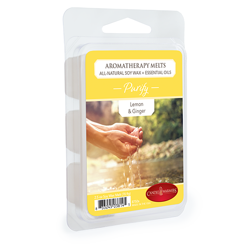 Purify Aromatherapy Melt 2.5oz