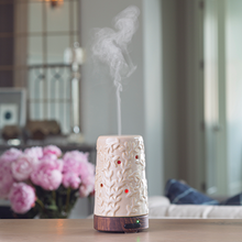 Load image into Gallery viewer, Flourish Ultrasonic Aroma Diffuser