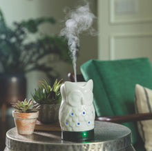 Load image into Gallery viewer, Owl Ultrasonic Aroma Diffuser