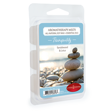 Load image into Gallery viewer, Tranquility Aromatherapy Melt 2.5oz - OUT OF STOCK
