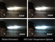 Diode Dynamics - 9012 HID Conversion Kit - Lowered Lifestyle