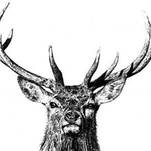 Load image into Gallery viewer, Majestic stag standard  mug