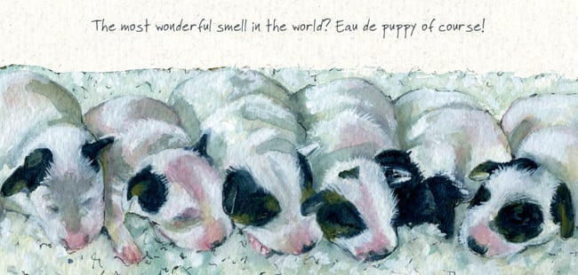 The most wonderful smell in the world? Eat de puppy of course!