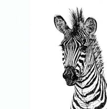 Load image into Gallery viewer, Zebra  Espresso cup