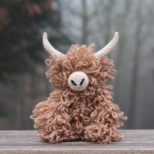 Load image into Gallery viewer, Morag the Highland Coo Kit