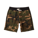 Billabong All Day Camo Men's Shorts