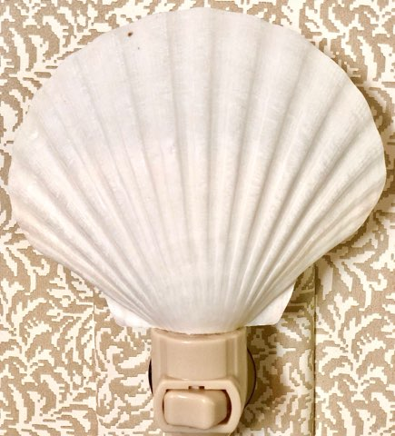 Seashell Night Lights - The Kemble Shop