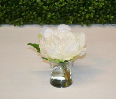 Snow Peony - The Kemble Shop