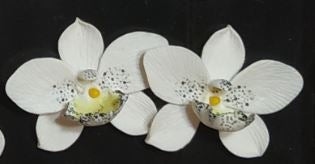 White /Blue Orchid Earrings - The Kemble Shop