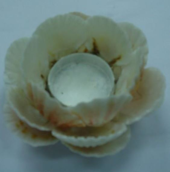 Custom Shell Tealight Votive - The Kemble Shop