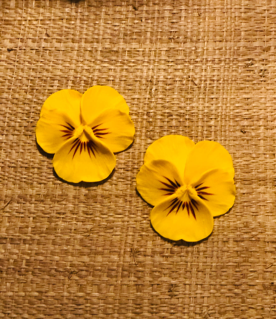 Yellow Sun Large Pansy Earring - The Kemble Shop