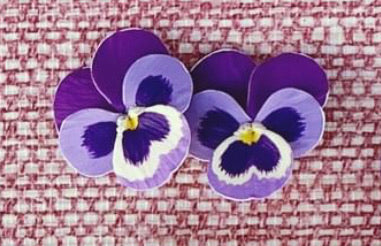 Purple Thunder Small Pansy Earrings - The Kemble Shop