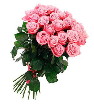 20 Fresh Roses Hand tied with a Ribbon