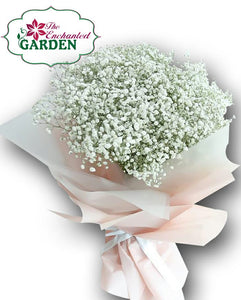 Pure Baby Breath Bouquet