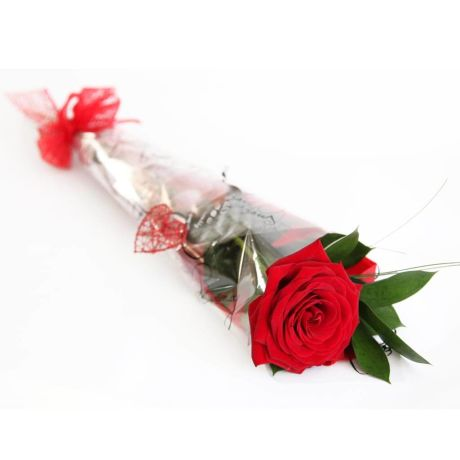 (10 pcs) Single Rose Wrap