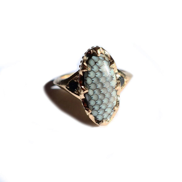 Crown Scale Ring