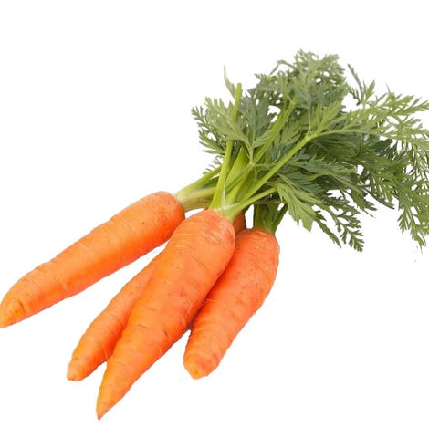 Tufted Carrots