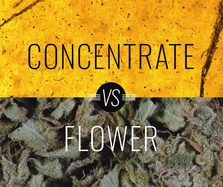 Flowers or Concentrates ?