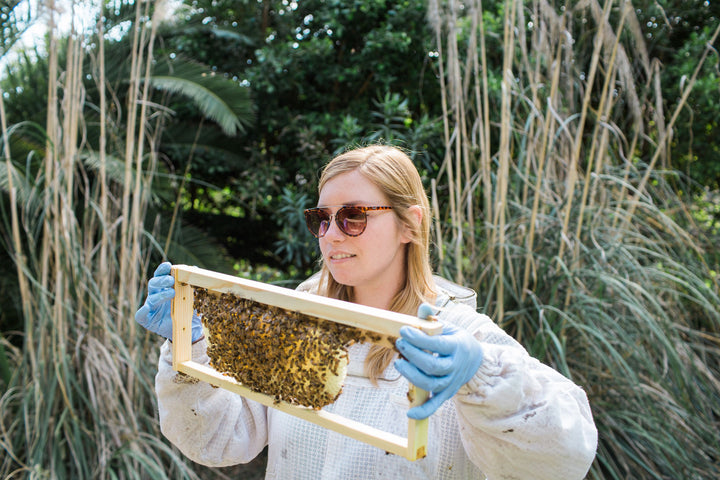 Advice from a pro backyard beekeeper