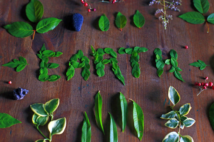 10 ways to help the planet for Earth Day
