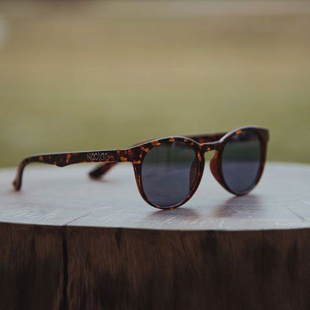 5 pairs of sunglasses perfect for summer