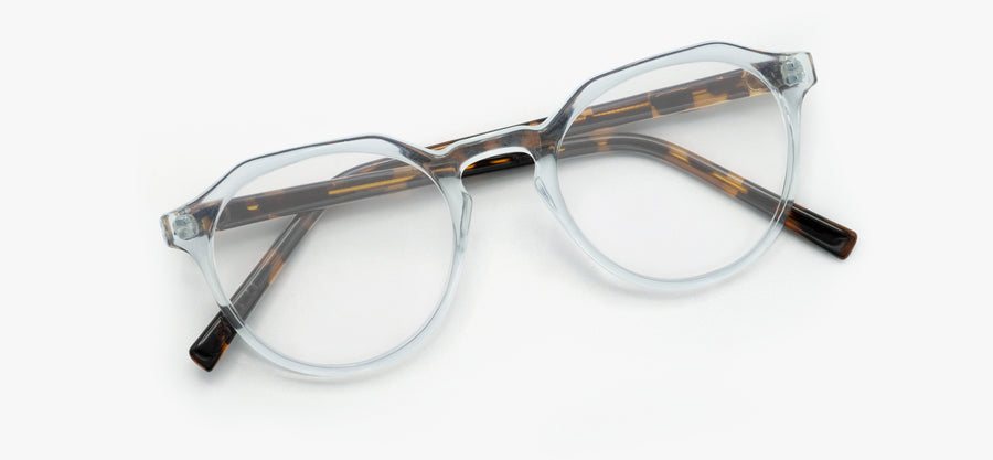 Glossy Brown Tortoise - Clear