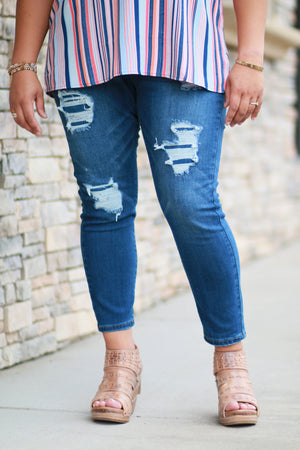 Denim Dreams Plus Skinnies