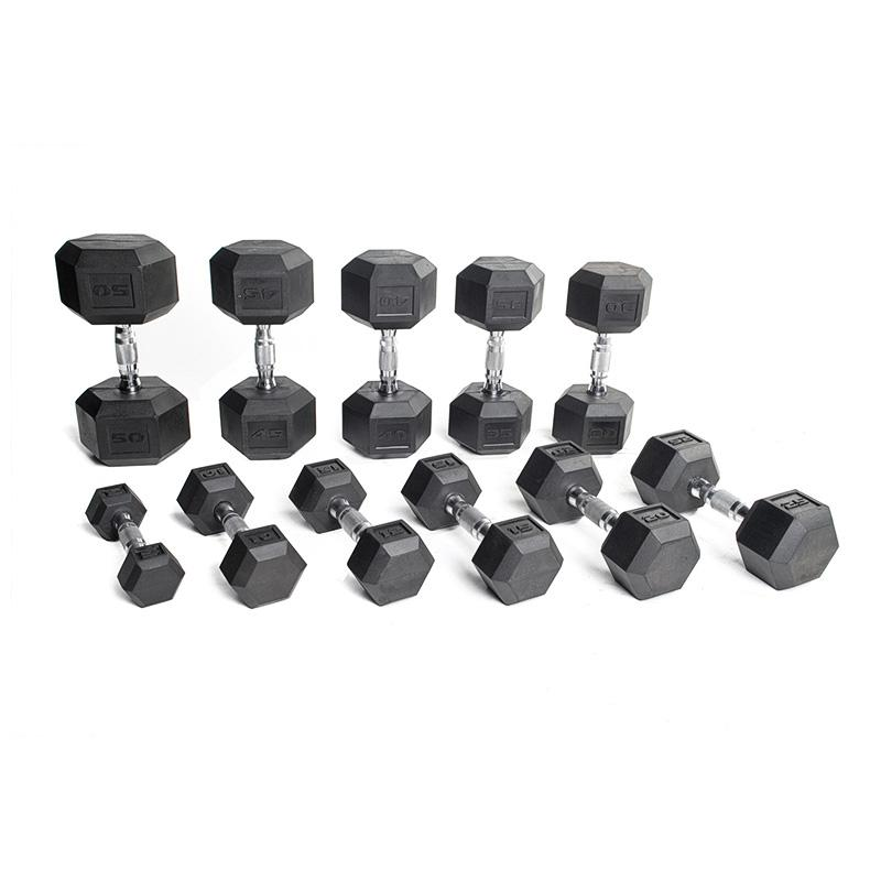 AlphaState Hexagon Dumbbells - Gym Concepts