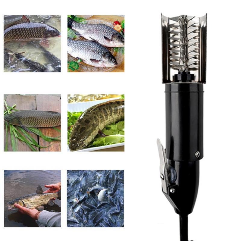 Fish Scalers