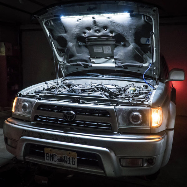 Scarab Under-Hood Light Kit