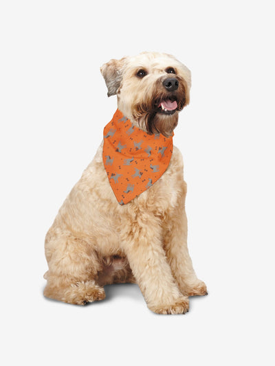 Dogs & Bones Bandana, Orange