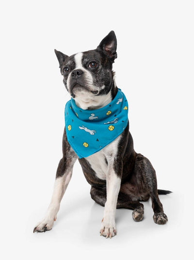 Insect Shield for Pets Ball & Squirrel Bandana