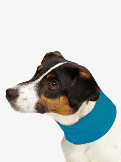 Insect Shield Pet Cooling Gaiter