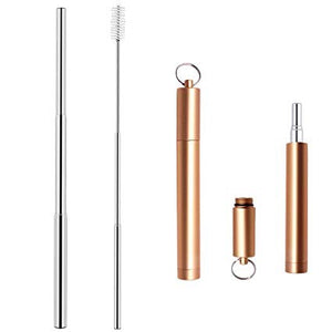 Portable telescopic straw