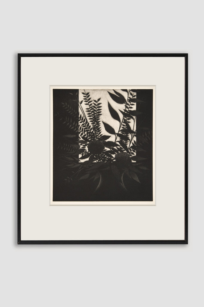 Window with Flowers 1982 Mezzotint by Robert Kipniss sold by the modern archive
