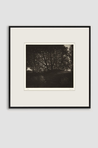 Summer's Eve Mezzotint <br/>by Robert Kipniss