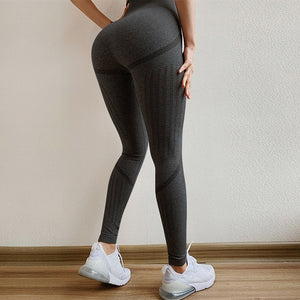 Qapel Swin Leggings