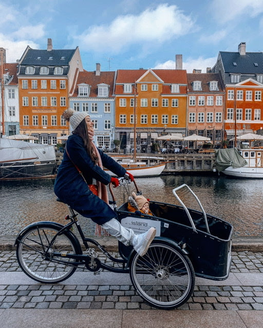 Family Trip to Copenhagen