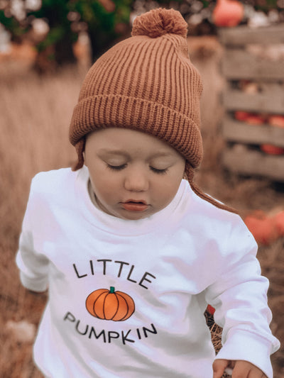 MOM PUMPKIN & LITTLE PUMPKIN TWO PIECE SWEATER SET